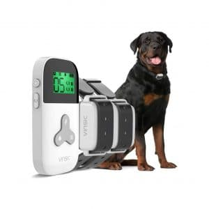 VINSIC Dog Shock Collar with Remote