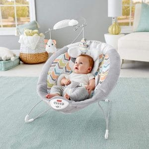 Top 10 Best Baby Rocker in 2020