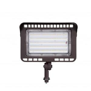 LEONLITE LED Flood Light Outdoor