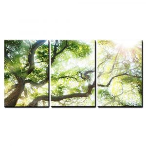 Wall26 Canvas Wall Art Big Tree with Sun Light Panels