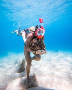 image feature snorkel masks