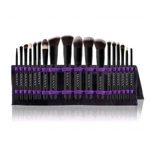 SHANY Artisan's Easel Elite Cosmetic Brush Set, 18-Pieces