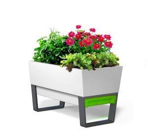 Glowpear Urban Self-Watering Planter