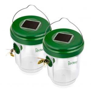 Reusable Non-Toxic Wasp Trap, (2 Pack)