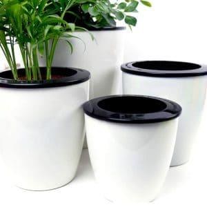 Mkono 3-Pack Self-Watering Planter