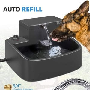 Petnf Dog Water Fountain 2 In 1 Drinking Fountain