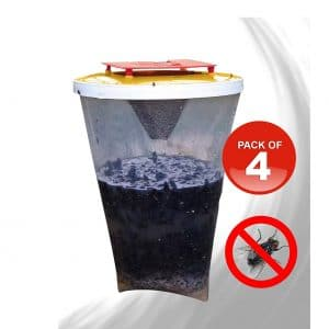 REDTOP 100 percent Non-Toxic Flycatchers Outdoor Fly Trap (Pack of 4)