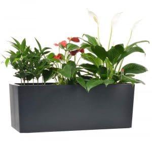 GardenBasix 10 Quarts Planter