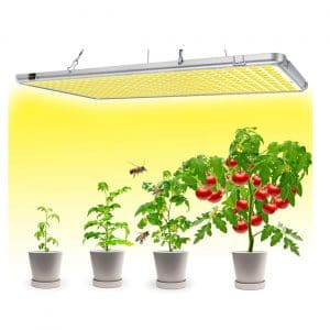 Bozily LED Grow Lights for Indoor Plants