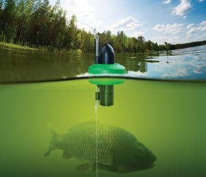 Underwater Fishing Cameras