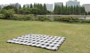Top 10 Picnic Blankets in 2019