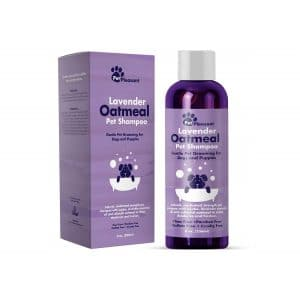 Honeydew Colloidal Oatmeal Dog Shampoo