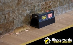 Electric Mouse Traps