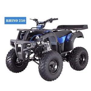 TAO Brand New Adult Size 250cc ATV