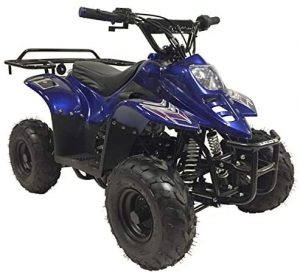 Coolster 110cc Adult ATV