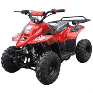 TAO 110CC New ATV