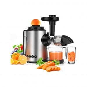Sagnart 2-In-1 Juicer Mute and Reverse Functions