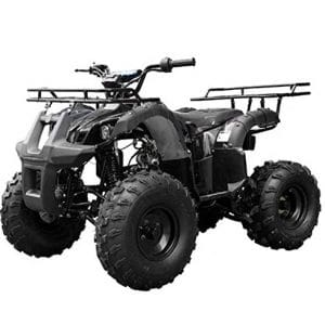TAO ATV with 110cc