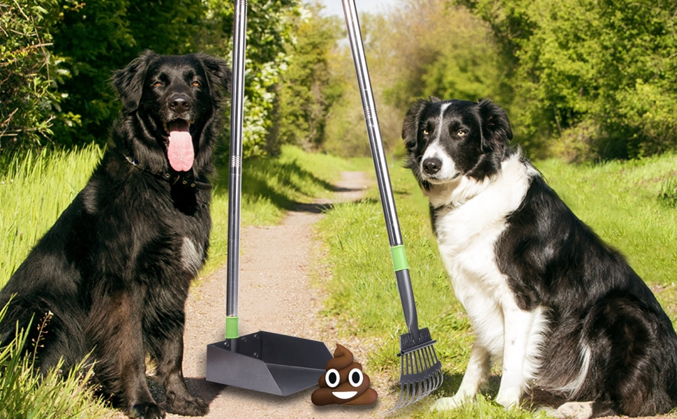 24 Foldable Long Handle Dog Poop Scooper for Large Medium Small Dogs 1 Poop Bag Dispenser Pet Waste Pickup with 4 Poop Bags Rolls Aircover Dog Pooper Scooper Easy to Use on Grass Gravel