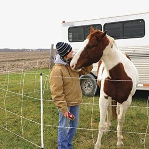 Premier Horse QuikFence 4 48 24-50 ft Horse Electric Netting Fence
