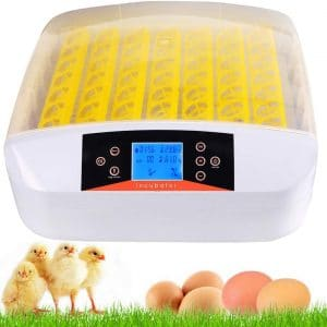 Kemanner Automatic 56 Digital Clear Egg Incubator Hatcher Egg Turning Temperature Control (56eggs)