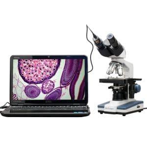 Amscope Binocular Compound Microscope