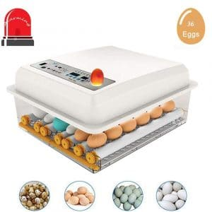 3 in 1 Intelligent Warming 36 Egg Incubators, Forced-Air Digital Fully Automatic Turner with Automatic Temperature Control for Hatching Chickens Ducks Goose Birds Pigeon Quail