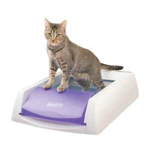 PetSafe ScoopFree Automatic Self-Cleaning Cat Litter Box