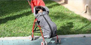 Baby Stroller Sleeping Bags