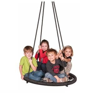 M & M Sales Enterprises Web Riderz Outdoor Swing