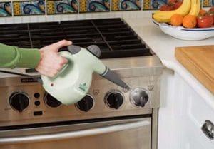 handheld steam cleaners