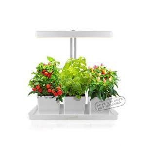 GrowLED Herb 24V Automatic Timer Hydroponic Garden Kit