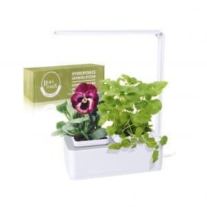BEAUTLOHAS Indoor Herb Garden Self-Watering