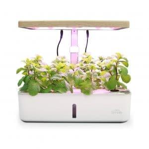 SIMBR Hydroponic Growing System 12 Plants Starter Kit