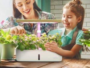 Hydroponic Garden Kits