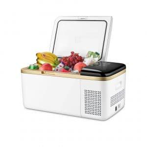 Linsion 19 Quartz Portable Refrigerator